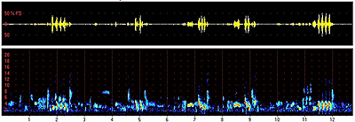 Spektrogram zpěvu slavíka obecného