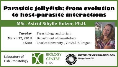 2019-03-12 Invitation - PARA Seminar Holzer.JPG
