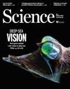 Modrozelený svět hlubokomořských ryb