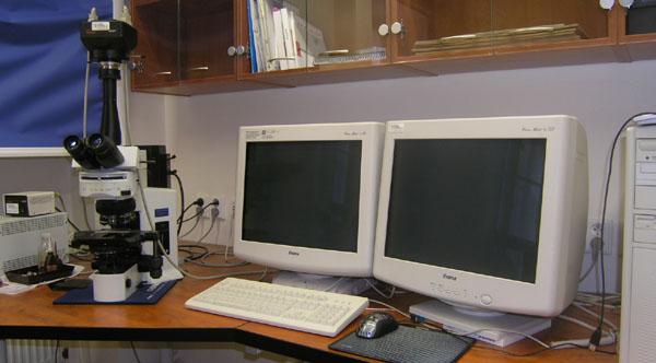 Mikroskop Olympus BX 51