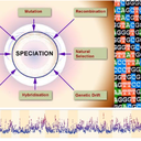 Genomics of adaptation and speciation