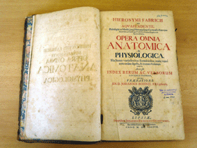 Historical Book 6