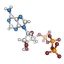 molekula_web_m.png