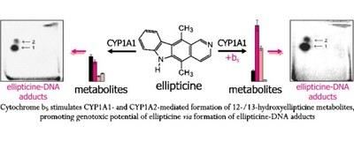CytB5modulation