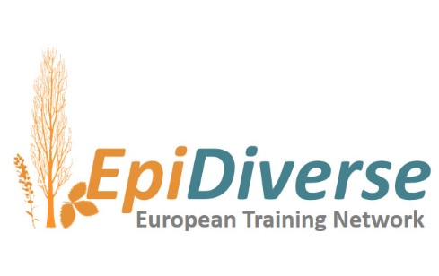 Do not look past! The Epidiverse project is hiring: 15 vacancies for a PhD position at the partner institutes all over Europe.