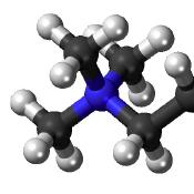 molekula.png