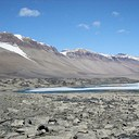 Popular Science: The microscopic inhabitants of Antarctic waters