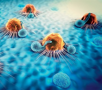 Popular Science: Is iron the new star in cancer treatment?