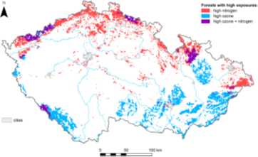 Popular Science: Where are Czech forests under potential risk due to the highest O3 exposures and N deposition?