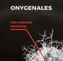 ONYGENALES 2020: Basic and clinical research advances in dermatophytes and dimorphic fungi in hindsight