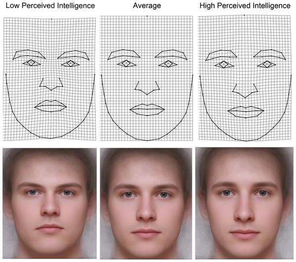 Obličeje muži