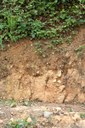 Profil půdy