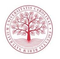 logo strom.jpg