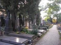 V rámci České republiky probíhal výzkum například na Vyšehradském hřbitově v Praze. Foto: Peter Mikula.