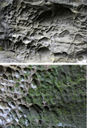 POPULAR SCIENCE: How are holes in sandstone formed?
