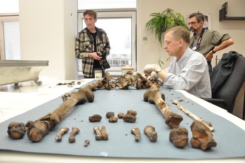 Analýza ostatků - Tycho Brahe