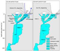 Proudění vody v Hranické propasti způsobené rozdílnou teplotou a mineralizací vody. V zimě (vlevo) se voda v Jezírku ochlazuje studeným vzduchem u hladiny, která klesá do větších hloubek a promíchává tak celý vodní sloupec. V létě se však při hladině Jezírka se drží voda méně mineralizovaná, a tak k míšení téměř nedochází. Zdroj: autoři článku.