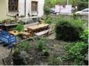 Popular Science: Community Gardens in Prague
