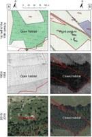 Typy proměn lesní pastvy ve sledovaných časových horizontech