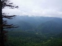 Z hlediska terénních vlastností je v rumunských horách povětšinou nejvíce počtu dní s mlhou během roku. V posledních letech však množství dnů s mlhou ubývá. Foto: Zuzana Tomšová.