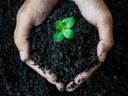 Téma Bc/Mgr práce: Role biocharu a kompostu ve zúrodnění  degradovaných zemědělských půd