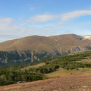 Faktory ovlivňující posuny horní hranice lesa