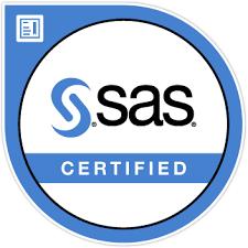 SAS_ico1.png