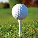 Geoinformatika pomáhá zkoumat golfová hřiště