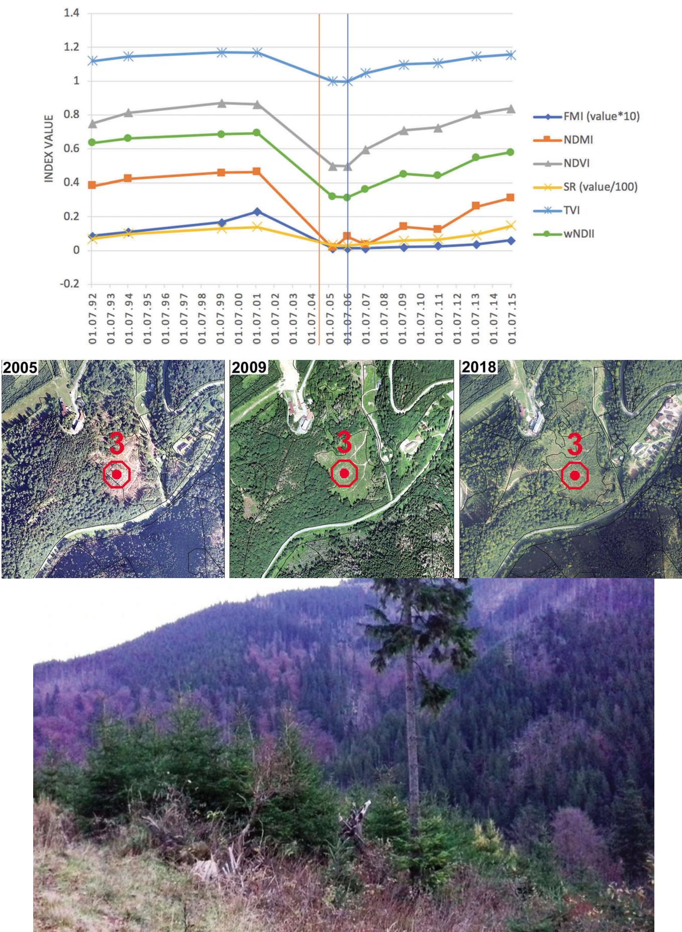 Obrázek 18: Vývoj vegetačních indexů pro lokalitu s větrnou kalamitou v Nízkých Tatrách mezi roky 1992 a 2015, pozorováno pomocí dat mise Landsat