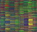 nový předmět - Evoluce genomu
