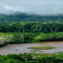 Pre-Colombian land use and environment in the Bolivian Amazon