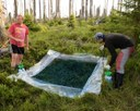 Lukáš Vlček: Retence vody v půdách horských oblastí na příkladu Šumavy